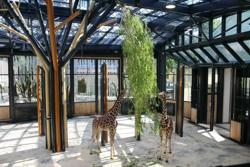 シェーンブルン動物園
