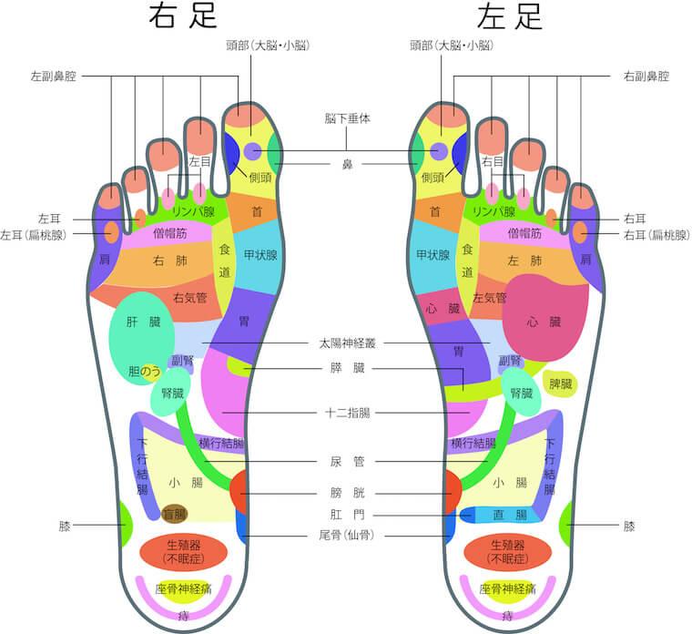 足の裏の図・ツボ押しの場所と効果について