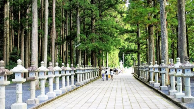 和歌山のおすすめ観光スポット!便利な観光マップもご紹介